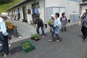 菜園プロジェクトを行いました!!@気仙沼総合体育館仮設住宅